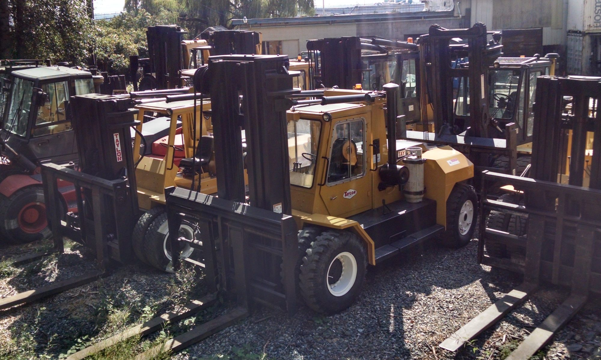 Large forklift rental